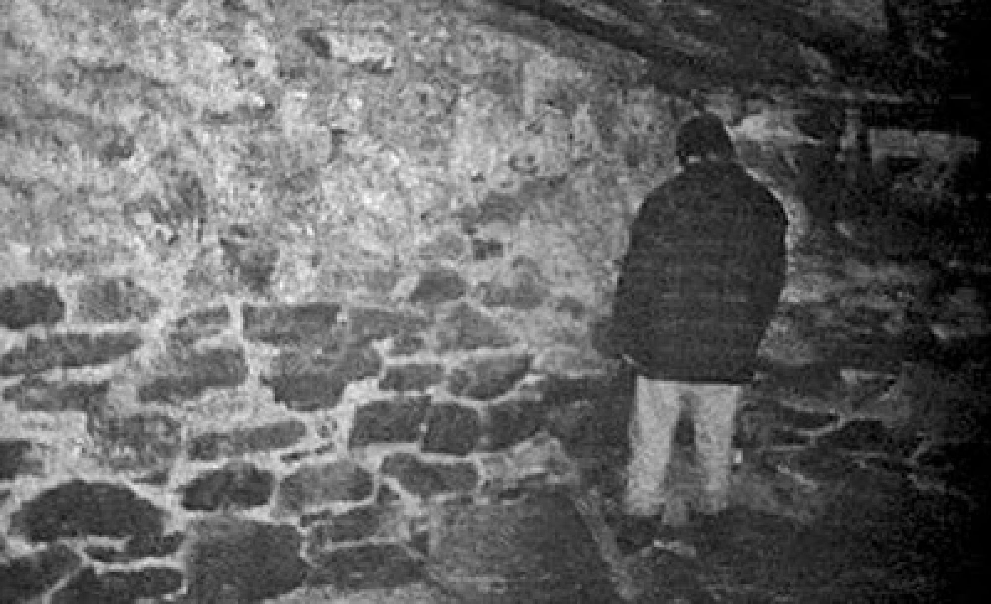 Image result for the blair witch