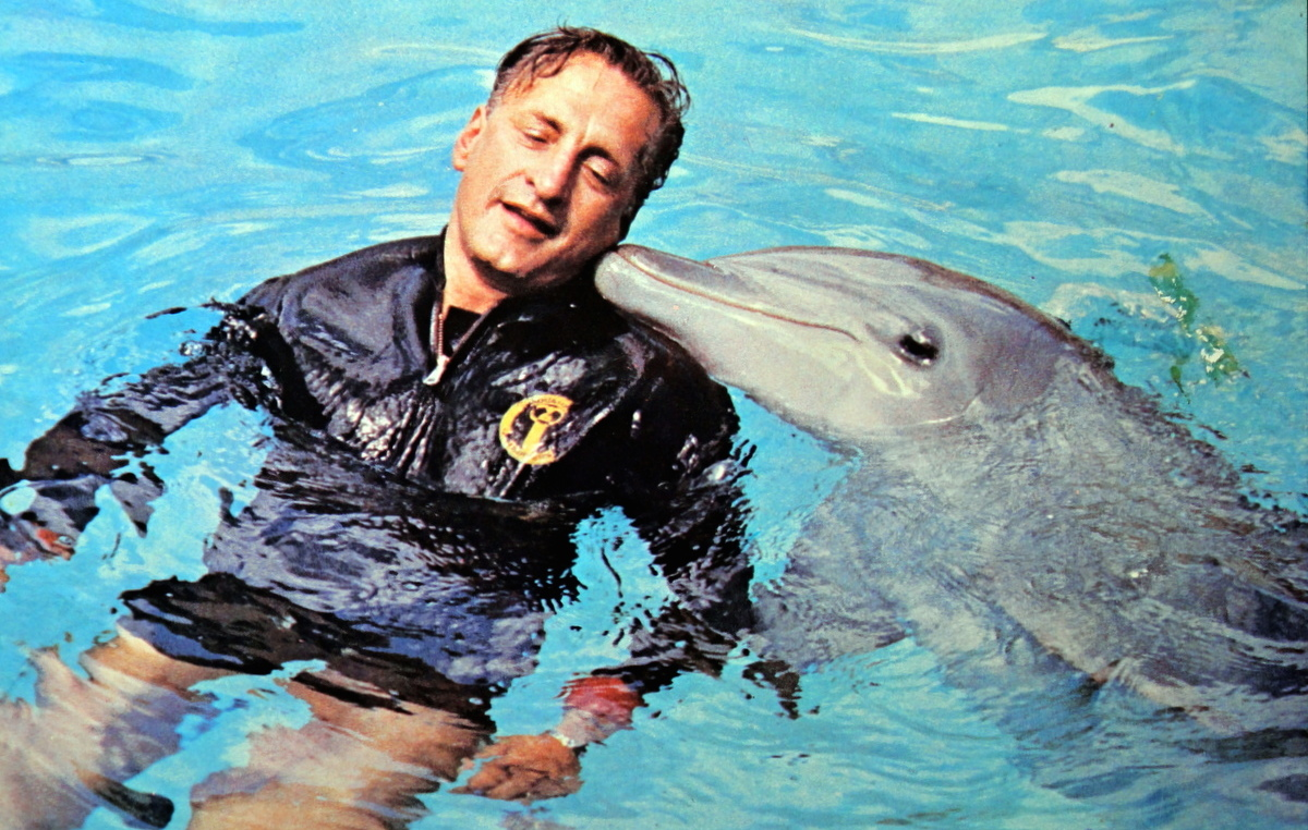 I want to train dolphins, what do I need to major in?