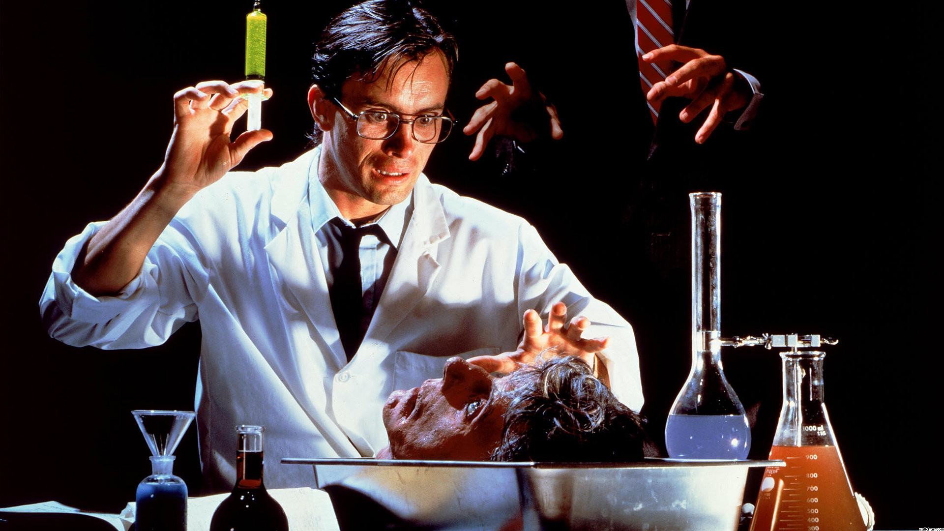 [Image: re-animator-505ab154e9daf.jpg]